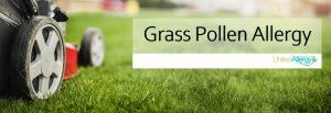 Grass pollen allergy can make summertime miserable.